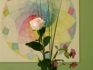 Rose vor Spirale